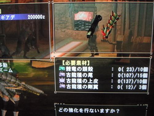 DSCF3149_convert_20110102130220.jpg
