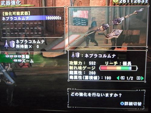 DSCF3159_convert_20110103033149.jpg