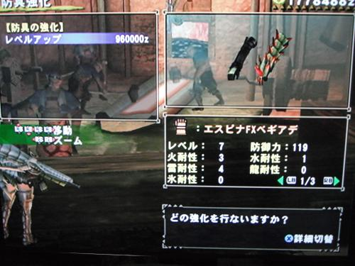 DSCF3172_convert_20110104130639.jpg