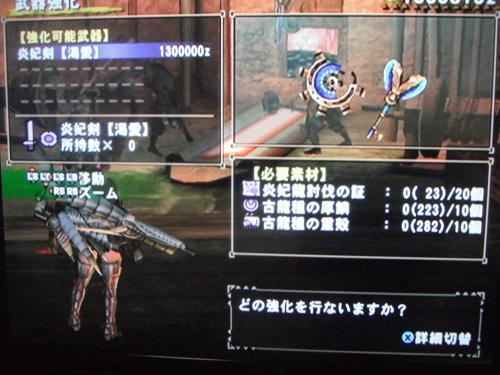 DSCF3216_convert_20110107134459.jpg