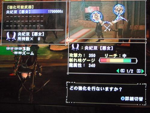 DSCF3311_convert_20110117130515.jpg