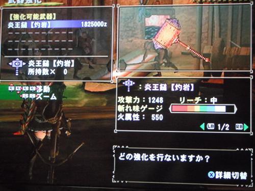 DSCF3312_convert_20110117130418.jpg