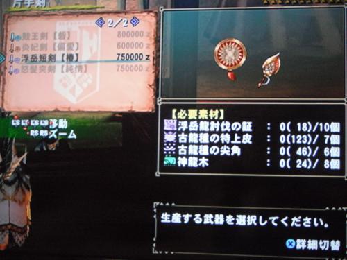 DSCF3504_convert_20110207103600.jpg
