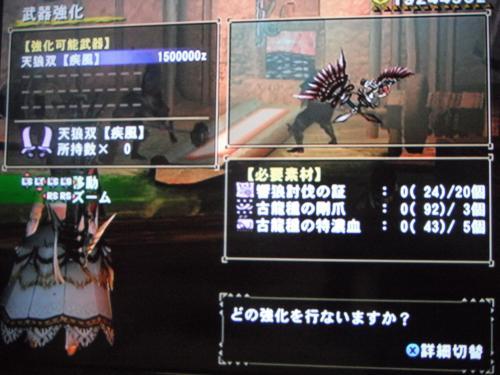 DSCF3505_convert_20110207103525.jpg