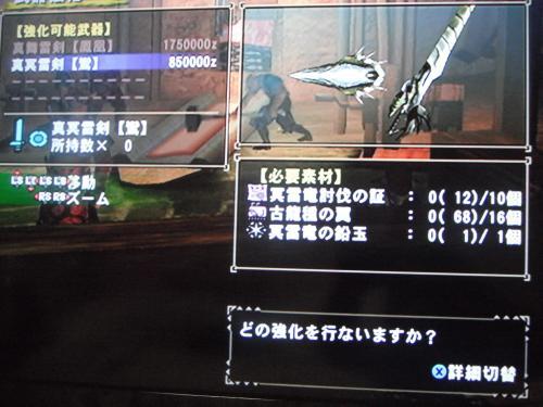 DSCF3506_convert_20110207103452.jpg