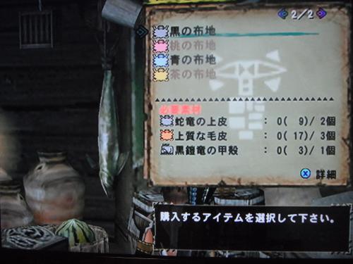 DSCF3561_convert_20110215180504.jpg