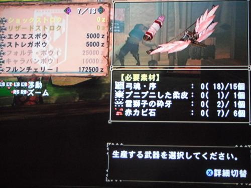 DSCF3668_convert_20110226201010.jpg
