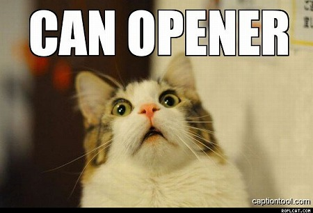 Can_Opener[1]