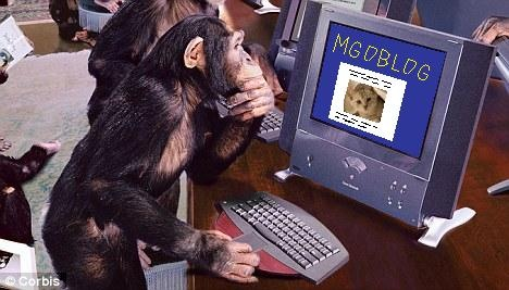 monkey-on-mgoblog[1]