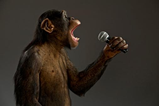 Monkey HEARTS Sing[1]