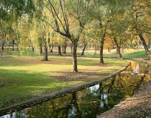 秋の札幌の公園