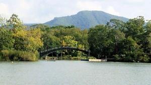 大沼をめぐる橋