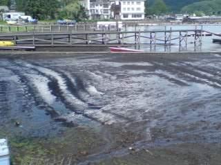 20100913 雨の後