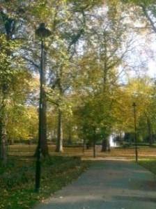 autumn_convert_20101205104622.jpg