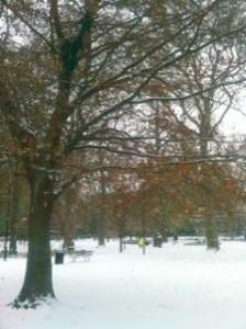 winter_convert_20101205104640.jpg