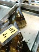 タイラ貝の画像1