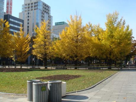 北海道旅行紅葉