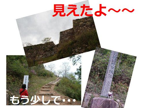 2011・04・29竹田城見えたよ