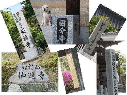 2011・05・02お寺