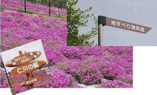 2011・05・04仁川の郷