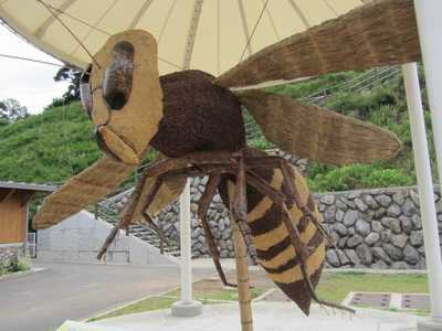 スズメバチ2