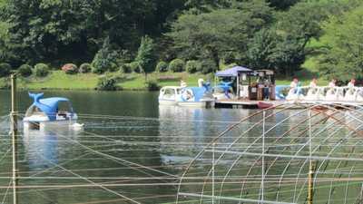 志高湖ボート3
