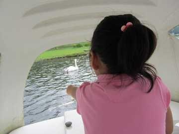 志高湖ボート4