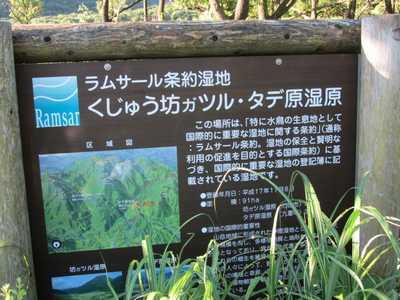 タデ原湿原4