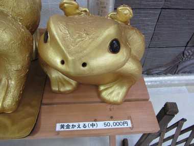 黄金かえる 5万