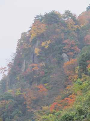 岳切渓谷4
