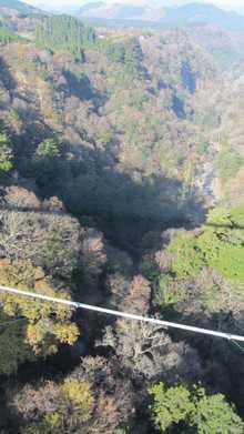九重夢大吊橋 3