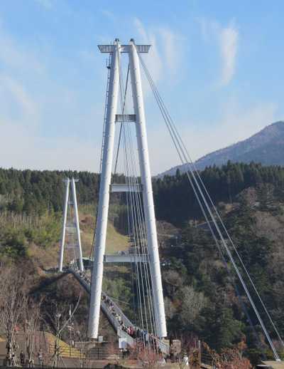 九重夢大吊橋 2