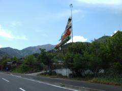 大山新道~新緑とこいのぼり