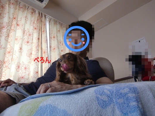 CIMG8146.jpg