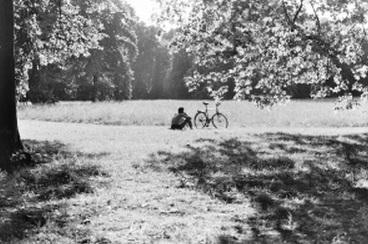 公園 休息 休憩
