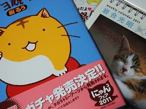 2011nekonohi_001