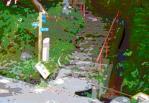 s5kanrido_20111030213410.jpg
