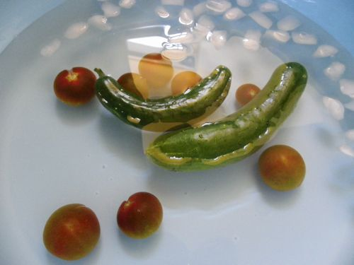 2011 野菜作り 069-1