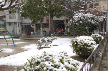 雪の大阪5
