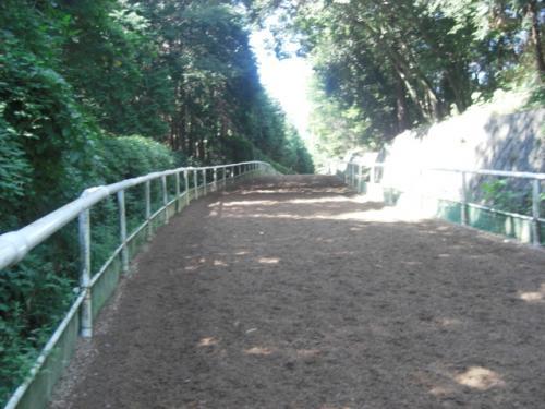 (4)逍遙馬道