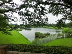 小畔水鳥の郷公園-2
