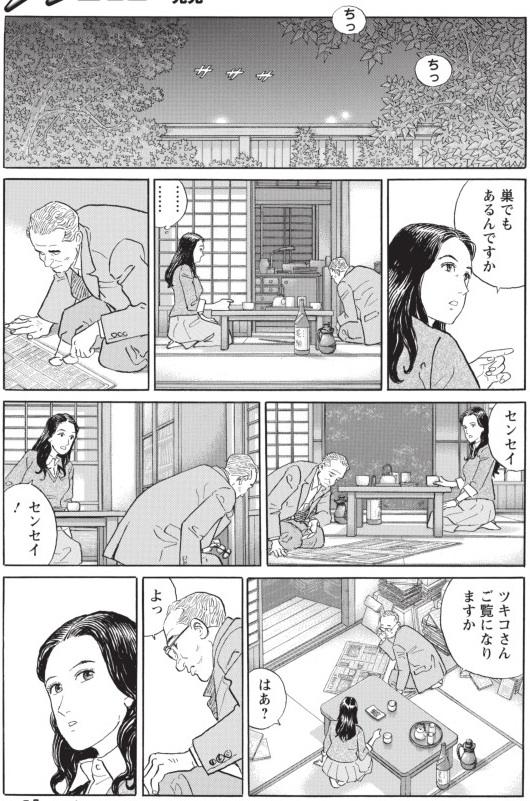 sensei_no_kaban_image2.jpg