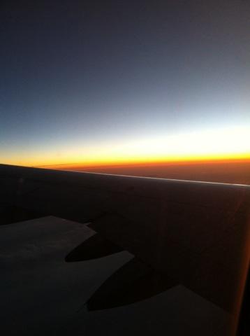 wing0102.jpg