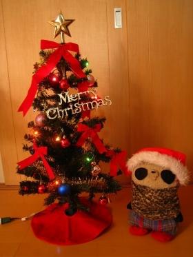 クリスマスツリー出したよ2014