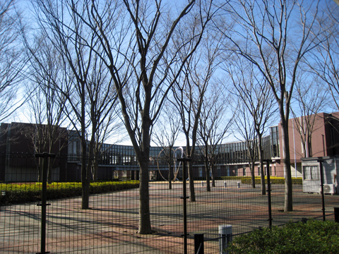 kashiwanoha110122_1.jpg