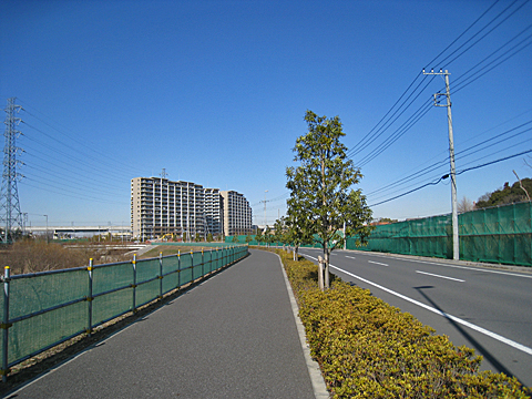 kashiwanoha110122_4.jpg