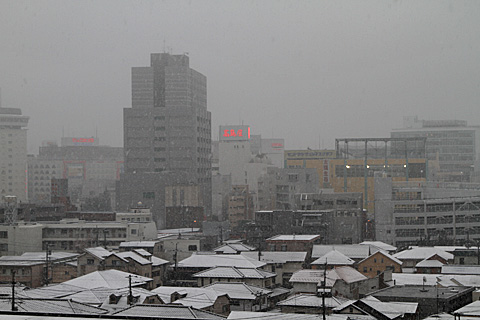 yuki110211_2.jpg