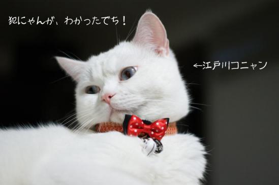 0_20121016223405.jpg