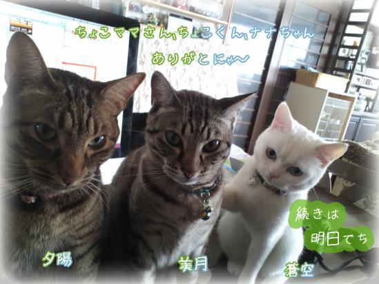 10_20120427093516.jpg