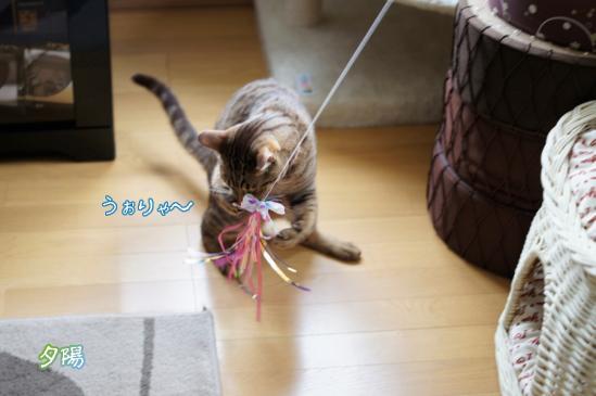 10_20120605081417.jpg